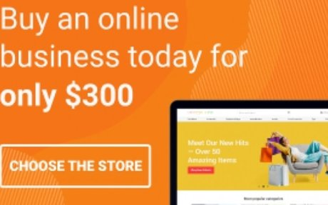 Make up to 2000% profit with AliExpress Dropshipping Business.