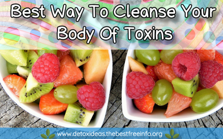 Best Way To Cleanse Your Body Of Toxins